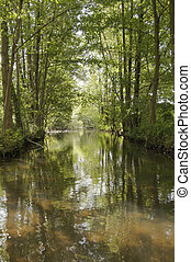 Spreewald 1 - Boat trip in the biosphere reserve of...