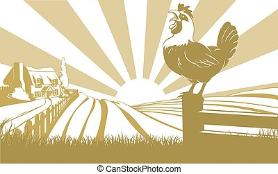 Rooster farm field concept - Rooster in the foreground and...