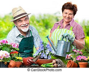 Senior couple in the flower garden - Portrait of senior...