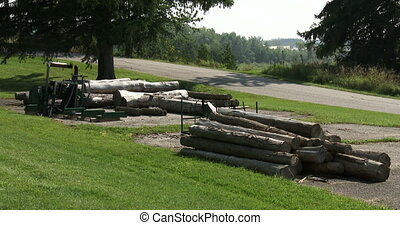 Logs of wood stacked - Logs of wood recently cut for winter