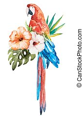 Tropical birds - Beautiful vector set with nice watercolor...