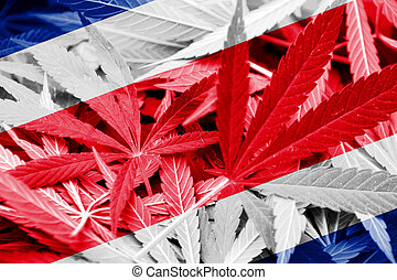 Costa Rica Flag on cannabis background. Drug policy....