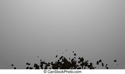 Swarm. Concepts swarm of insects or random motion of...