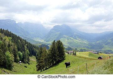 mountain in Appenzell Switzerland