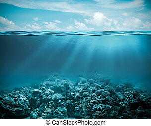 Sea or ocean underwater deep nature background - Sea or...