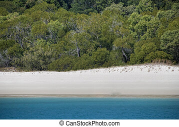 Girls in Whitehaven Beach, Queensland, Australia, August...