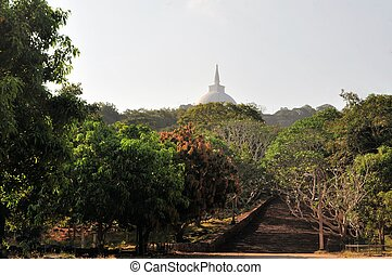 Buddhist stupa and stairs, Mihintale, Sri Lanka - Buddhist...