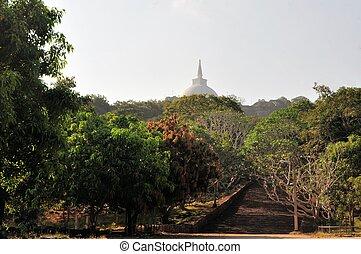 Buddhist stupa and stairs, Mihintale, Sri Lanka - Buddhist...