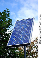 solar panel in front of a tree and blue sky