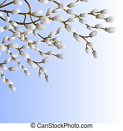 Pussy willow branch spring background  vector illustration