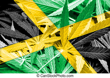Jamaica Flag on cannabis background. Drug policy....