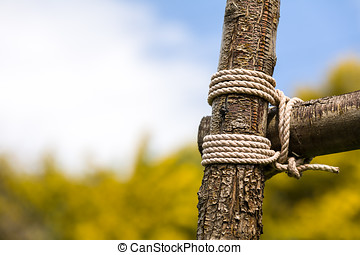 Wood tied for fence - A pair of wood limbs tied together...