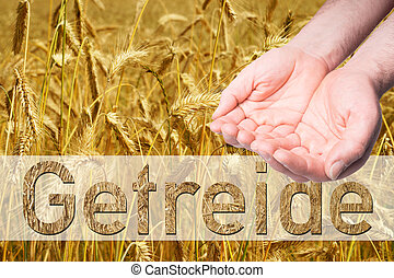 Grain field - empty Hands and Grain field with the german...