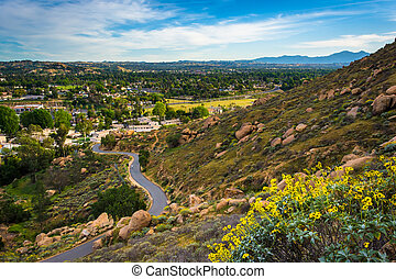 Yellow flowers and view of trail at Mount Rubidoux Park,...