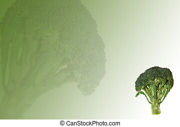 broccoli - fresh broccoli on green abstract background