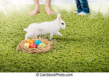 Funny little rabbit and Easter eggs - Funny little rabbit...