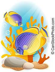 angelfish - Vector illustration - Two angelfish on the...