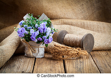blue Campanula terry flowers in paper packaging, on wooden...