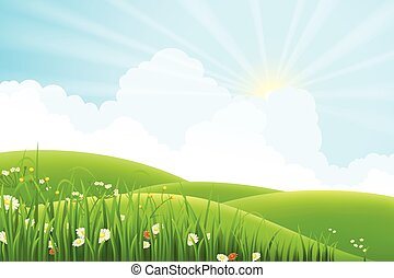 Meadow landscape - Summer sunny meadow landscape, vector...