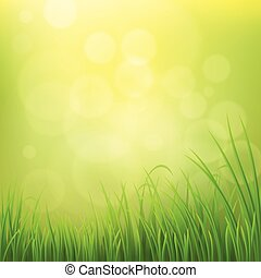 Spring grass background - Spring nature background with...