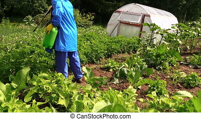 man spray potato plant - man with chemistry proof clothes...
