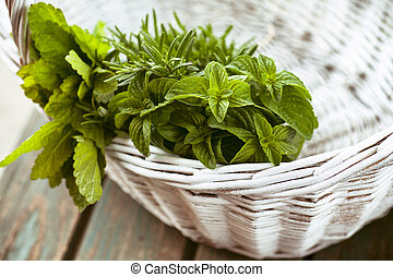 Fresh herbs Melissa, rosemary and mint in rustic setting