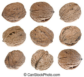Walnuts - Group of walnuts isolated on white background