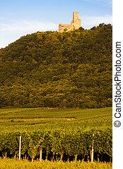 城堡, Ortenbourg, 阿爾薩斯, 法國,