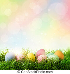 Colorful easter eggs on pastel colored background