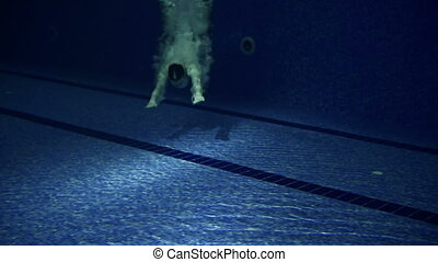 Diver in Pool - Close up of man approaching camera swimming...
