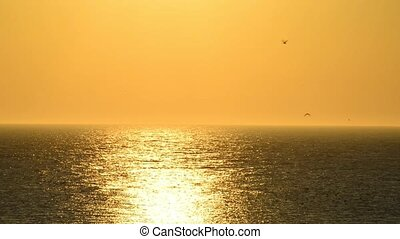 Sunset with passing sailing ship and sound of break wave and...