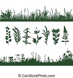 silhouettes grass - silhouettes meadow grass and twigs of...