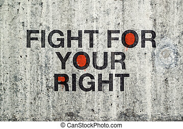 Fight For Your Right Grafitti on Cement Concrete Wall.