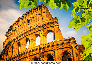 Colosseum at sunset in Rome, Italy