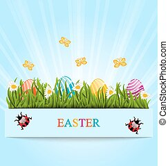 Greeting card with Easter colorful eggs and camomiles in green grass