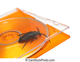 bug in software concept - bug in software metaphor concept