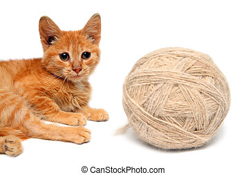 small cat and big clew of wool - red small cat and big clew...