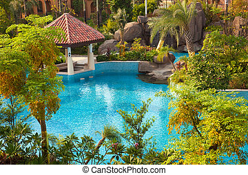 Swimming pool in garden - Swimming pool and trees in the...