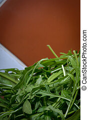 Rucola vegetable, nice to find it in a fresh salad