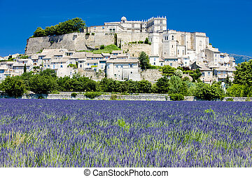 Grignan with lavender field, D�partement Dr�me,...