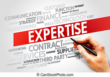 Expertise related items words cloud, business concept
