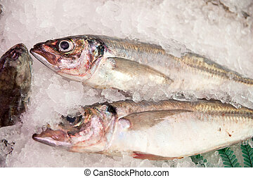 Whitings on ice at the fishmongers