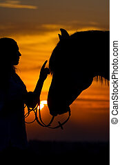 Girl and horse - Beautiful horse with girl silhouette on...