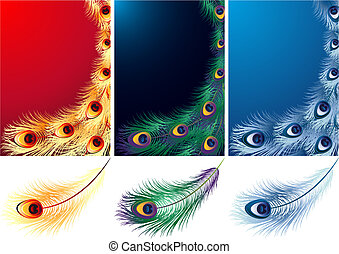 feather - Vector illustration - peacock, phoenix and ice...