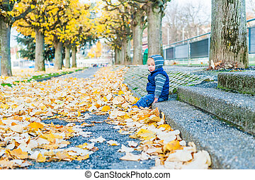 Autumn portrait of a cute toddler boy
