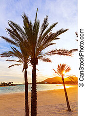Alcudia Majorca at sunset on the beach Mallorca Balearic...