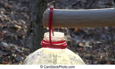 fresh healthy spring birch sap drink drops in plastic bottle