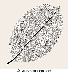 Withered leaf.