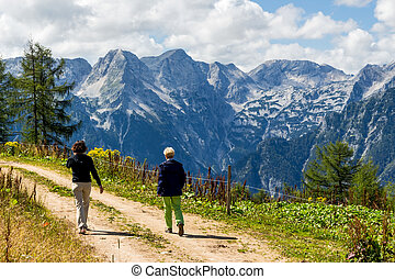 hikers in mountains of austria - a lovely place to wander...