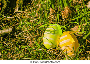 Easter eggs on grass - Colorful easter eggs on green grass